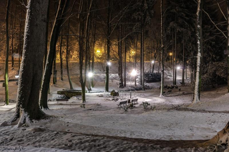 Park Zdrojowy zimą.